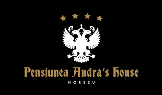 Pensiunea Andra's House Horezu